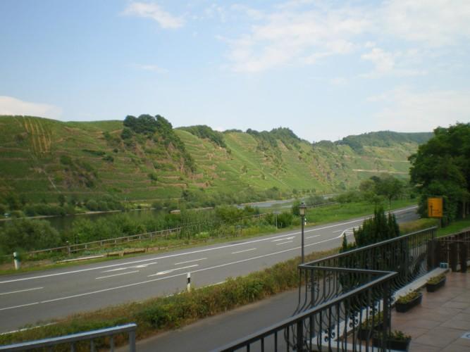 Der Ausblick auf den Weinberg am deutschen Gruppenhaus Moselschleife für barrierefreie Gruppenreisen.