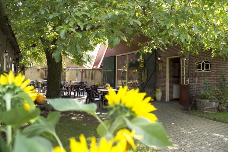 Der Innenhof des Gruppenhauses Eelink in den Niederlanden.