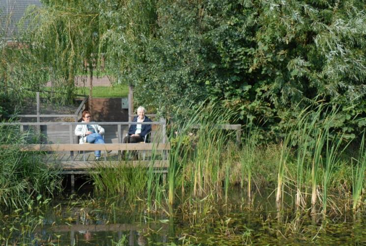 Der Teich mit kleiner Terrasse im handicapgerechten niederländischen Gruppenhaus Follenhoegh.