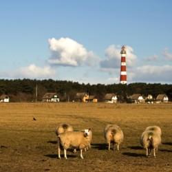 Ausflugsziele am Gruppenhotel Ameland in den Niederlanden.